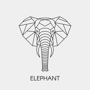 Abstract polygonal head of a elephant. Geometric line African animal. Vector illustration.