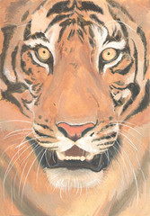 A photorealistic portrait of a tiger painted in mixed media with high resolution for printing, interior and design, publications on the Internet, branding and business...