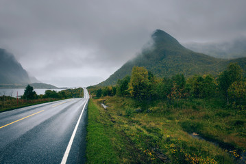 Wall Mural - Scenic road along the coastline in Norway on a rainy and foggy day
