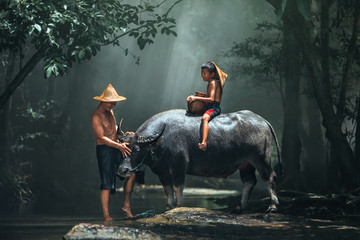 Dad and son this is lifestyle of family farmer at rural Asia. Traditional life of famer in countryside Thailand. The joy of children with buffalo in the river at the forest.