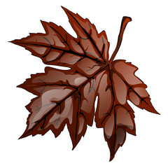 Brown autumn maple leaf isolated on white background. Vector cartoon close-up illustration.