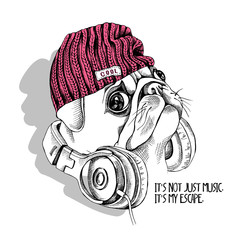 Pug in a hipster hat and with a headphones on a neck. Vector illustration.