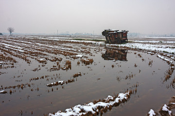 View of a rice field in winter with snow and an old agricultural machine.
