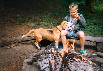 Give me these last piece, please! Boy with beagle dog have a picnic near campfire