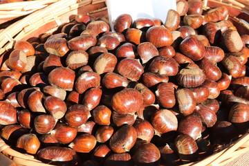 castagne caldarroste frutto autunnale
