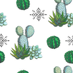 Vector seamless pattern with color houseplants and aztec ornament. Vintage illustration with cactus and succulents in engraving style. Hand drawn floral texture with tribal element
