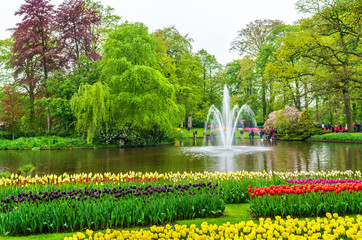View of Keukenhof Garden, also known as the Garden of Europe, in the Netherlands.