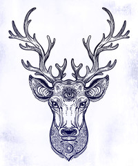 Ornate Deer head with beautiful antlers, decorated with patterns and sacred eye.