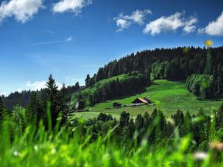 Fond de hotte en verre imprimé Vert Vue sur une ferme de Cerniat, non loin de Charmey, Gruyères, Suisse