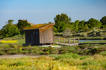 Shack at the wetlands