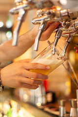 The barman pours a light beer from the tap