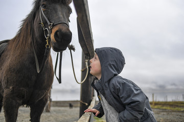 Close up of adorable young boy staring at the nose of a beautiful Icelandic horse in a stable in Akureyri, Iceland.