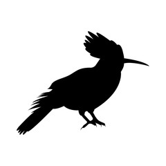 Vector image of the silhouette of the bird of Odd