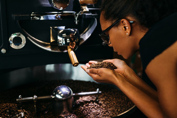 Woman holding coffee beans in two hands, checking quality
