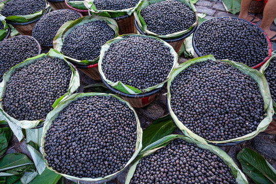 Straw basket full of fresh acai berries to sell at a fair in the city of Belem, Brazil.
