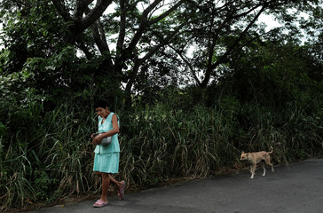 A woman carries a pot containing a meal as she walks near her dog on a road in the countryside of Tolima
