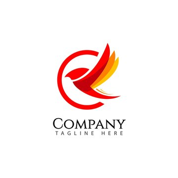 Bird Company Logo Vector Template Design Illustration