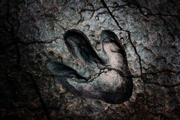 Crack broken dinosaur footprint dark background