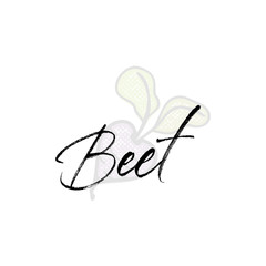 Beet word on background illustration. Fruit web element, Isolated Vector.