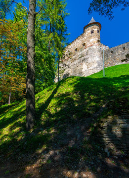 Stara Lubovna Castle of Slovakia on the hillside. beautiful medieval architecture. popular tourist attraction. lovely summer scenery