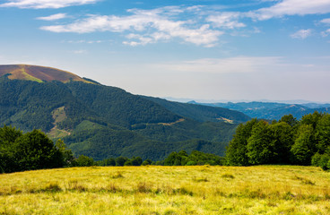 grassy meadow on top of a hill. beautiful summer landscape with high mountain in the distance