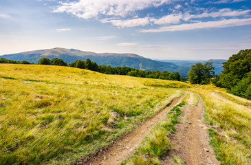 road through grassy meadow in mountains. beautiful summer landscape of Carpathians. Apetska mountain in the distance under the cloudy sky