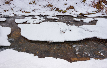 forest creek in winter. ice and water turnaround. lovely background