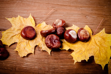 Chestnuts and autumn leaves on a old wooden table. Toned