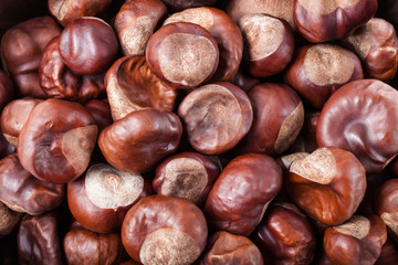 Lot of chestnuts for background