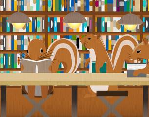 リスの図書館