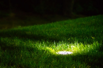 Decorative Garden Light in ground built-in, Lanterns In Flower Bed In Green Foliage. Garden Design