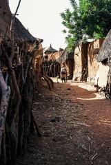 Rue dans un petit village du pays dogon