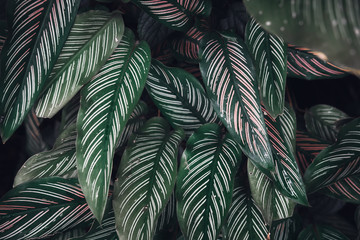 Dark faded green leaves pattern background