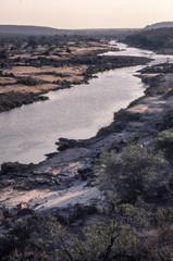 Foto auf Acrylglas Elefant Olifant river in the Kruger National Park