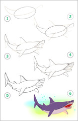 Page shows how to learn step by step to draw a cute shark. Developing children skills for drawing and coloring. Vector image.