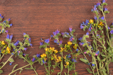 Beautiful wild flowers on wooden background. Frame of flowers.