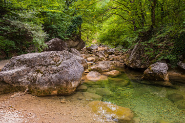Landscape - forest, rocks and mountain river.