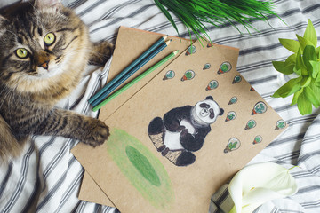 Picture of panda lying on the bed with cat and flowers, grass. Flat lay