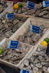 Oysters for sale in Deauville, Normandy