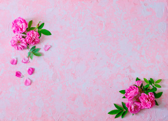 Border of pink roses on a pink old ructic concrete background, pastel, top view, copy space
