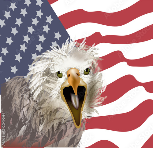 American eagle on american flag background