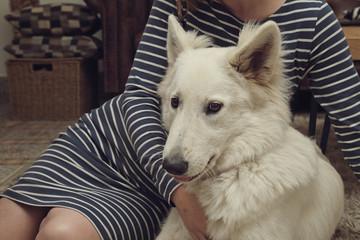 jeune femme avec son chien berger blanc