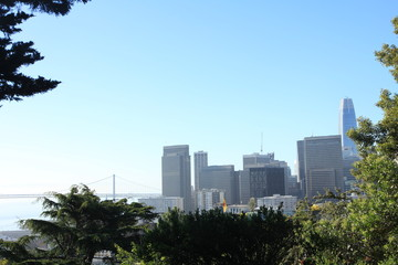 View of Financial District from Telegraph Hill in San Francisco