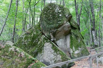 Дольмен в лесу, в долине реки Псезуапсе.Поселок Мамедка, Краснодарский край, Россия