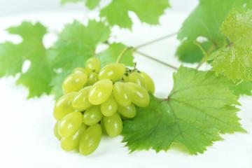 Photos of green tropical fruit grapes.