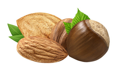 Hazelnut and almond isolated closeup   with leaf as package design elements. Fresh organic filbert on white background. Macro four Nuts. Collection