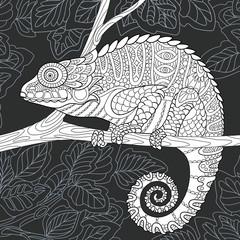 Chameleon in black and white line art style