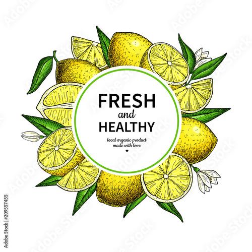Lemon Frame Vector Drawing Citrus Fruit Circle Label Template