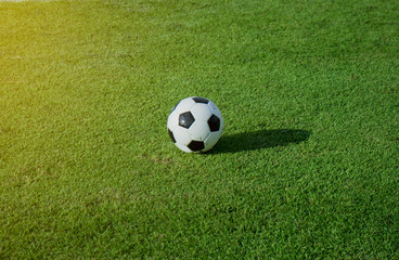 Soccer ball on green field at stadium with sunshine