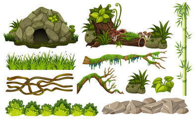 Set of jungle objects